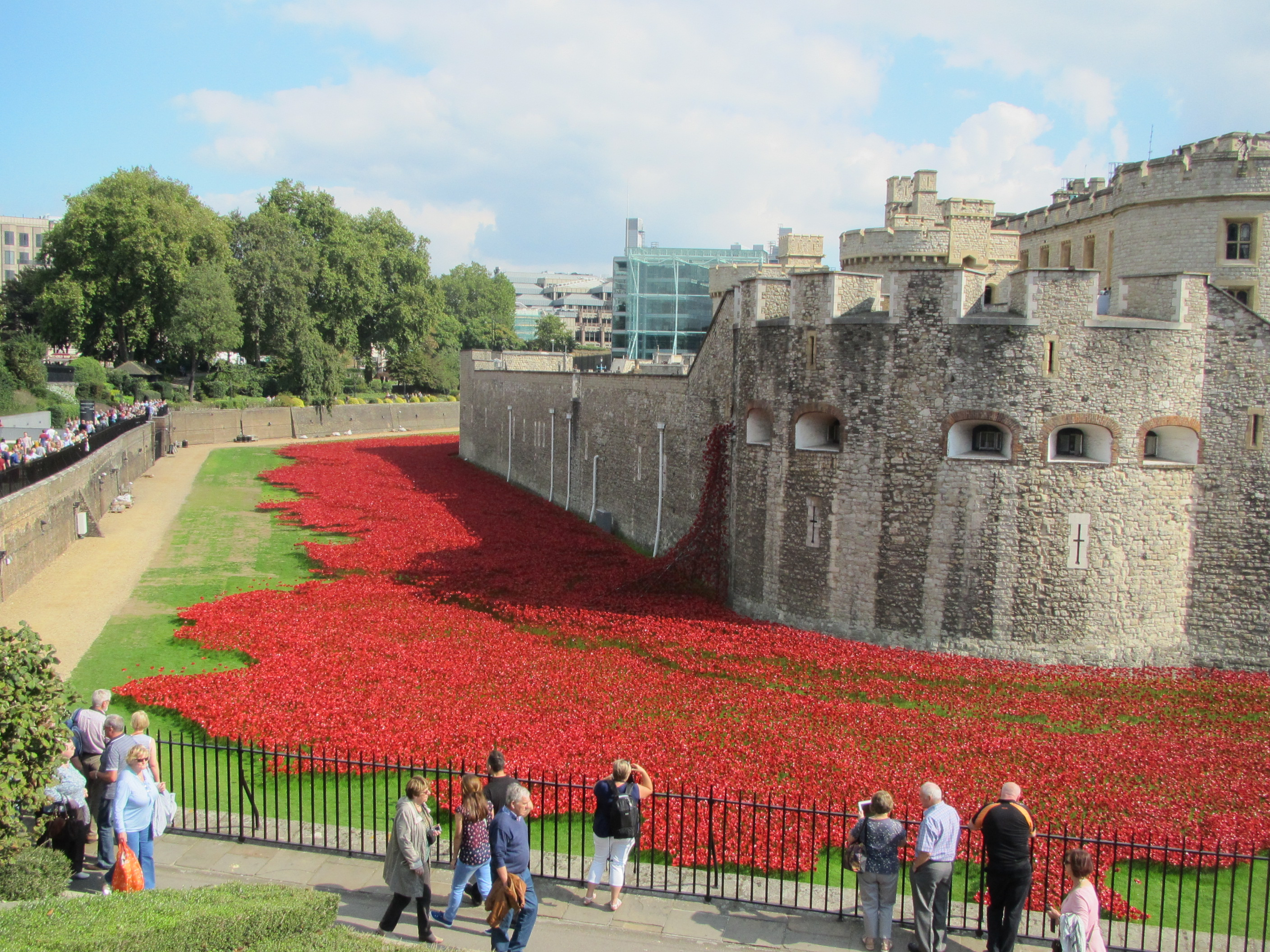 Ceramic poppies, Tower of London Remembers, August - November 2014