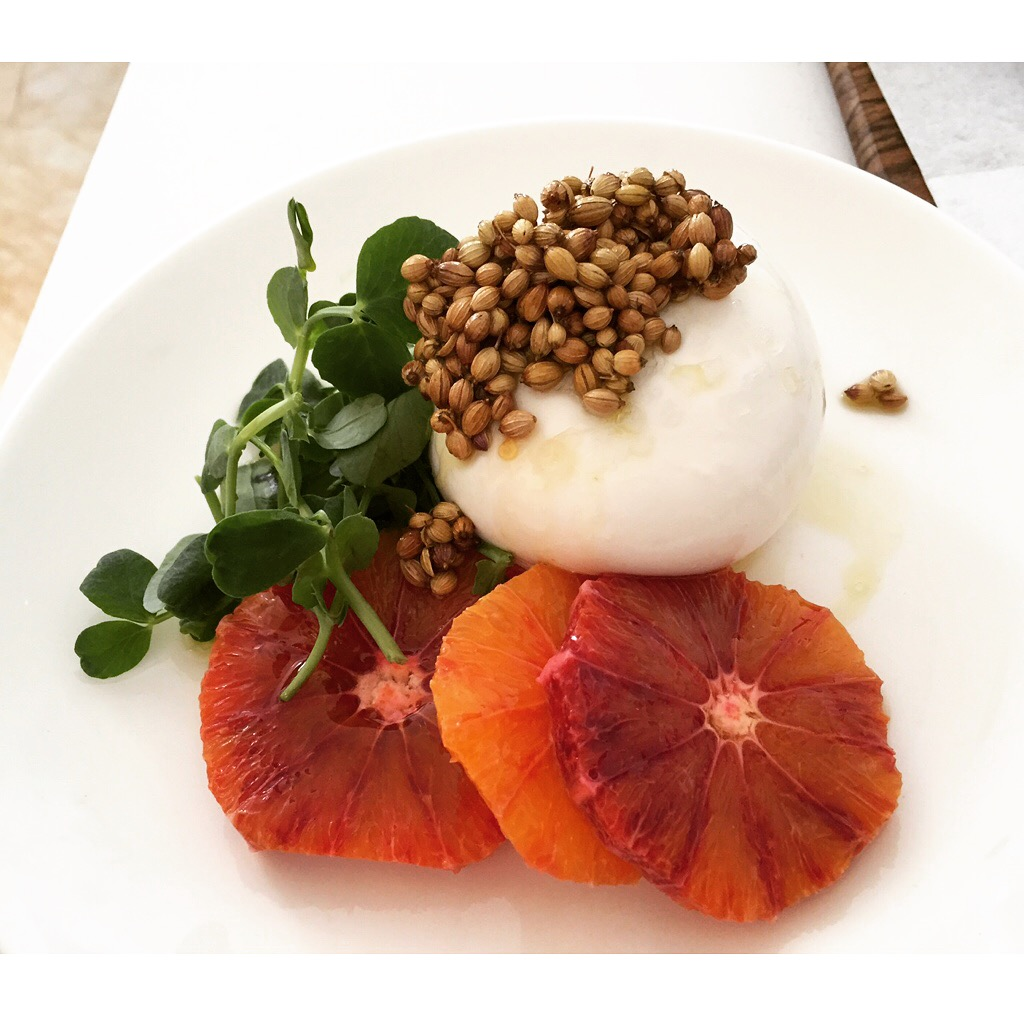Burrata and blood orange with crispy coriander seeds