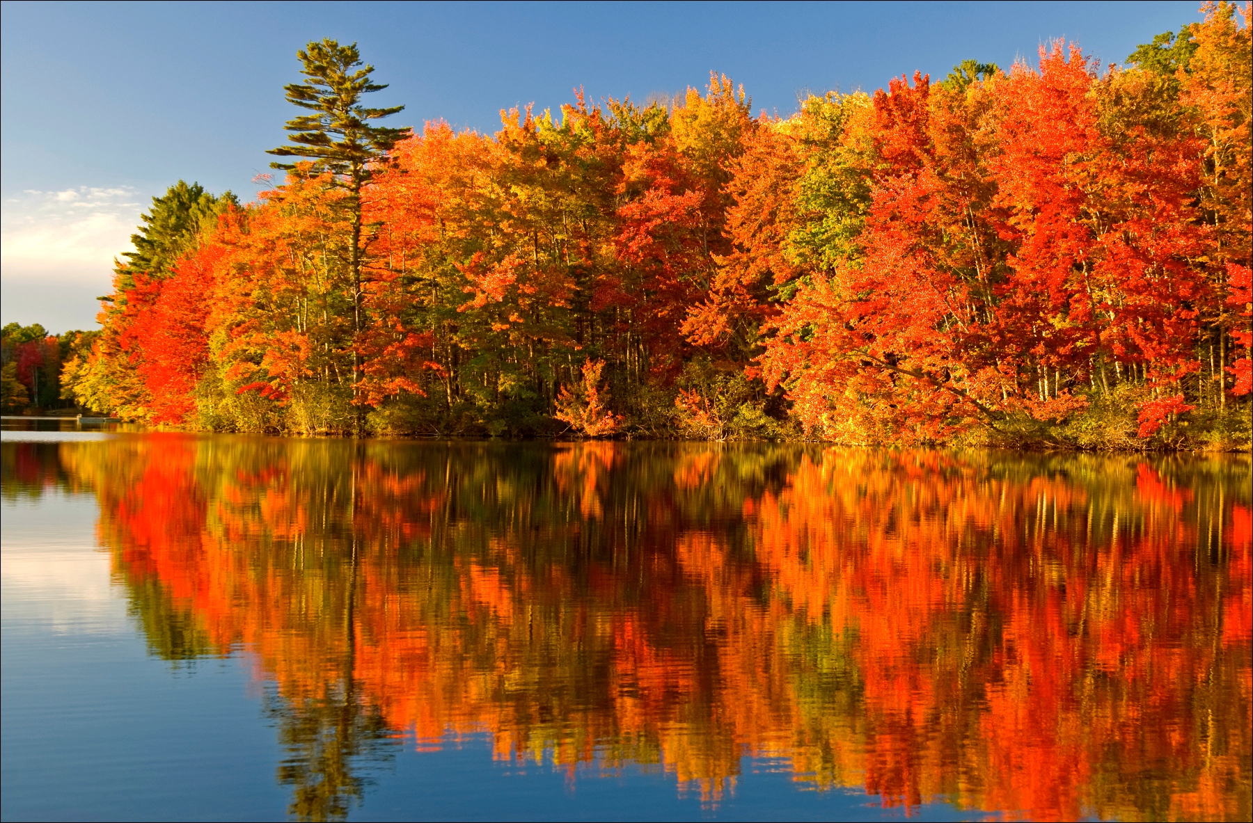 Algonquin Park Fall Colours Maples Ash Honey Locusts Style Domination Fashion Blogger