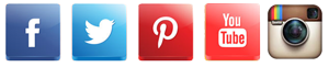 social_buttons_300