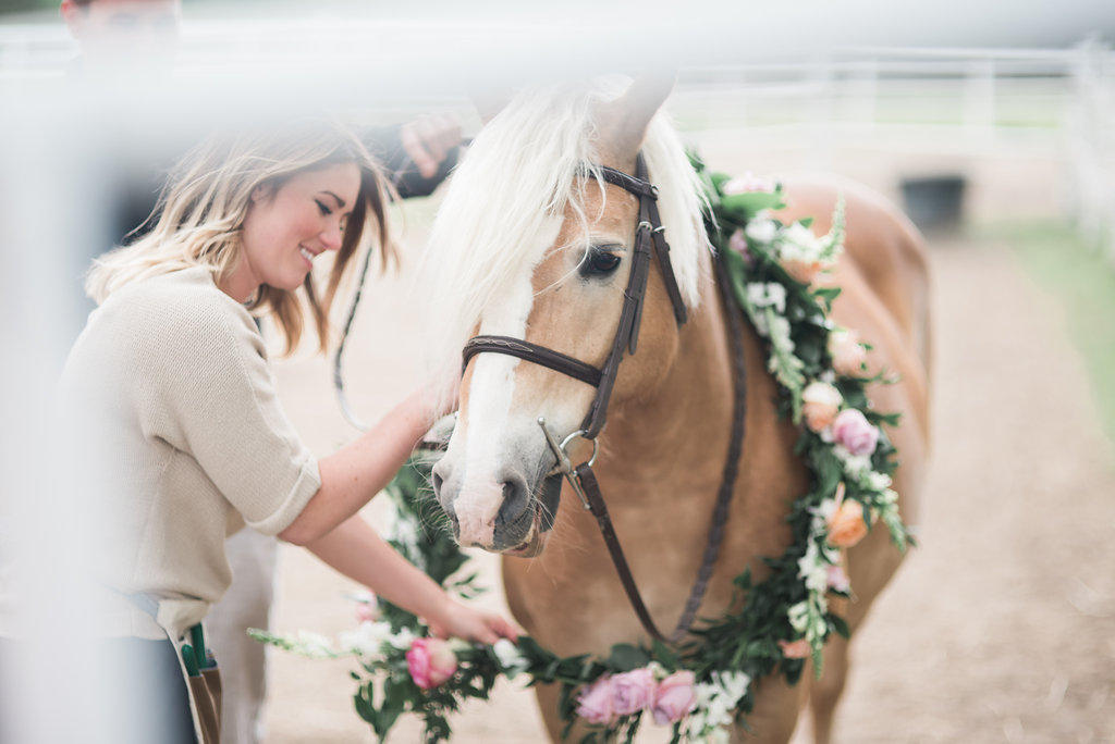 Horse wearing floral reigns